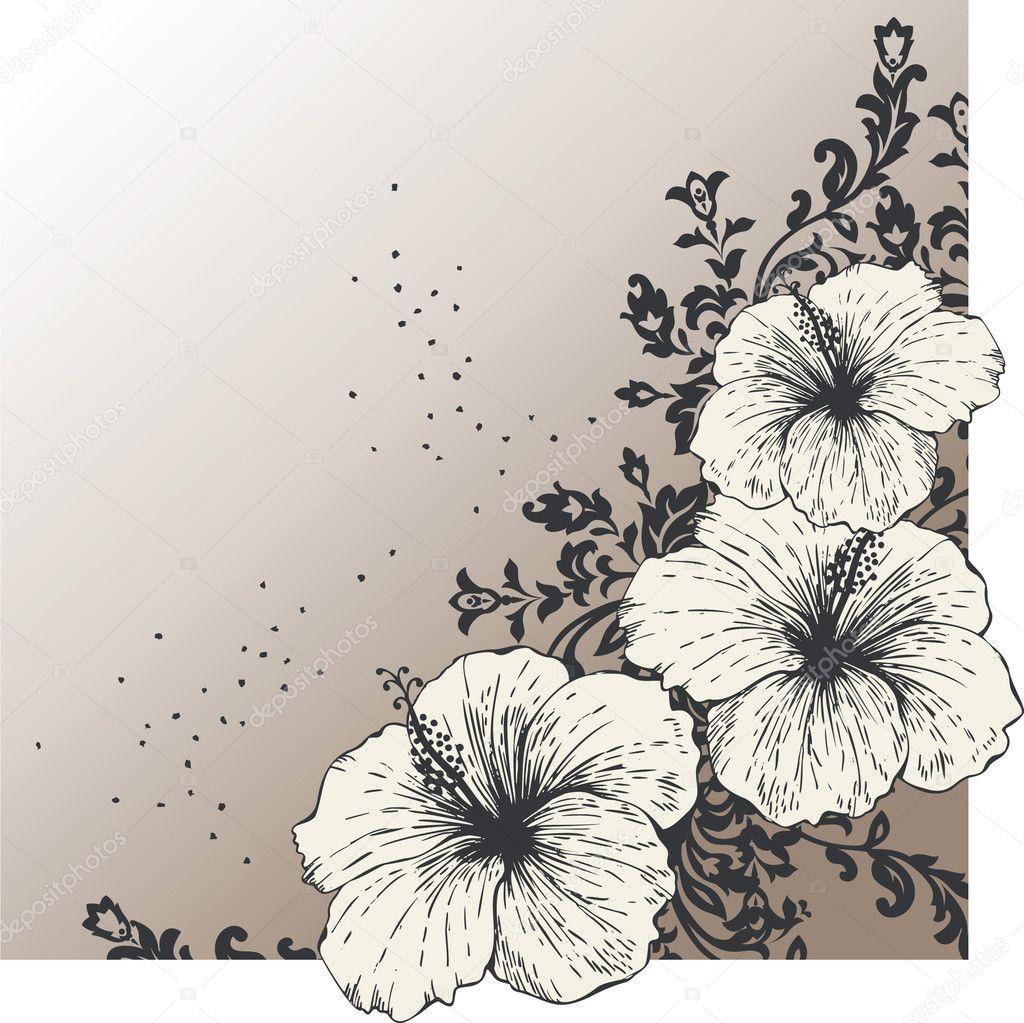 Abstrait avec fleurs d 39 hibiscus image vectorielle mur34 - Dessin d hibiscus ...