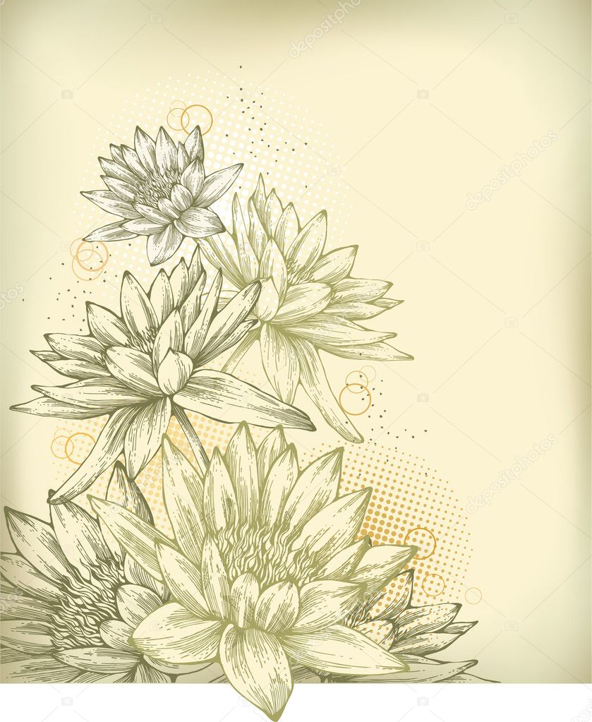 Background with hand drawn water lilies
