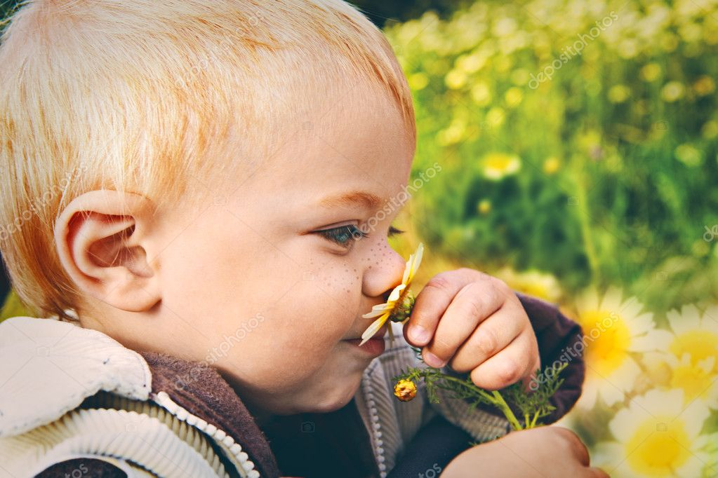 Small baby boy holding a daisy in his hand and smelling it with retro effect
