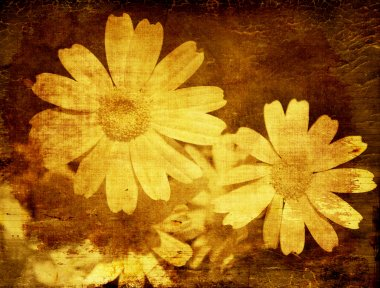 Abstract floral grunge background