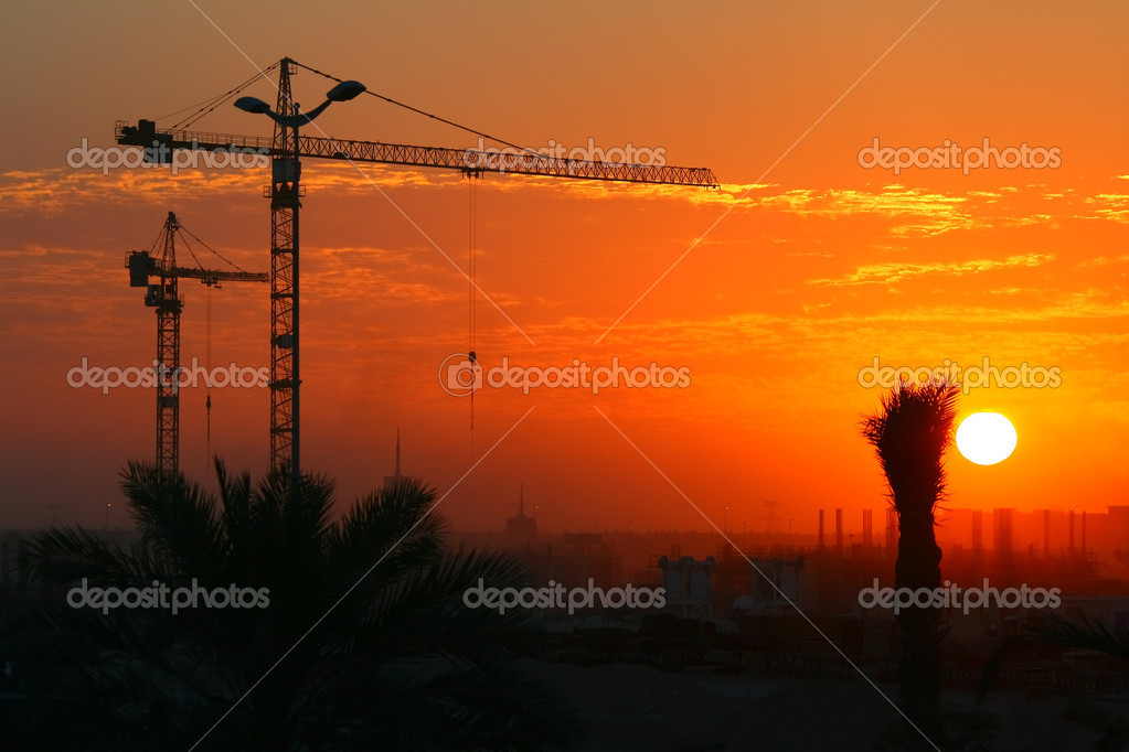 Cranes over sunset