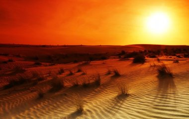 Extreme desert