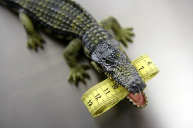 Toy cocodrile, aligator with centimeter tape measure in his jaws