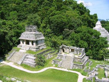 Palenque mayan ruins maya monuments Chiapas Mexico stock vector