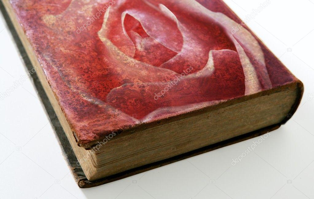 Rose Imprime Sur La Couverture D Un Vieux Livre
