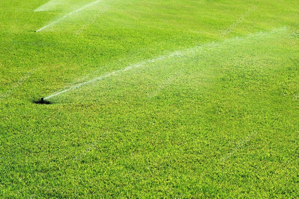 Grass garden spring water in a row