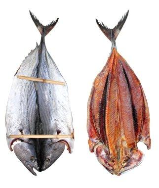 Bonito tuna salted dried fish Mediteraranean sarda