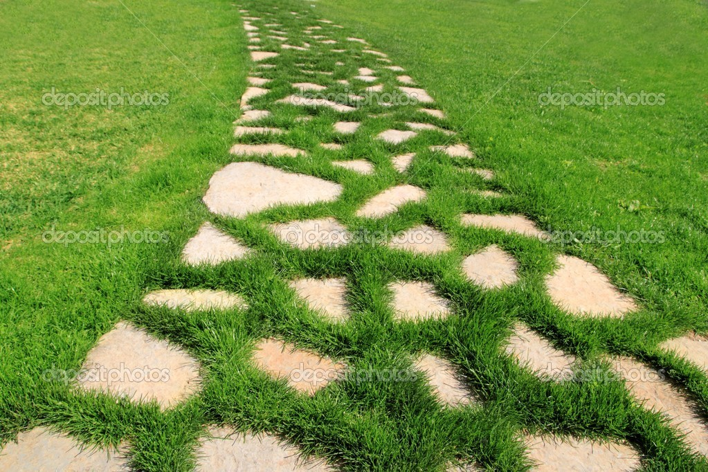 Stone path in green grass garden texture vanishing perspective
