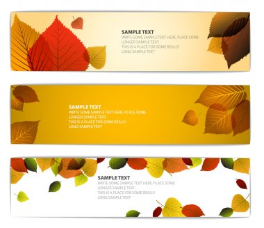 Fresh natural fall vector horizontal banners with leafs