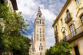 Fotografie Kathedrale von Sevilla, Spanien