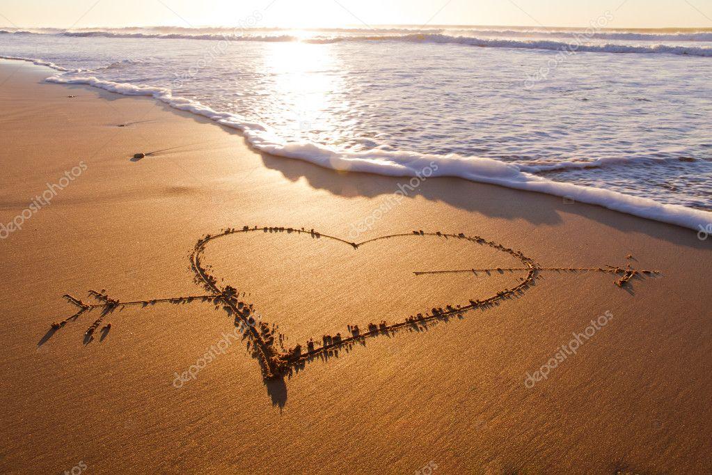 Heard dhape with arrow drawn in the sand on the atlantic coast. stock vector