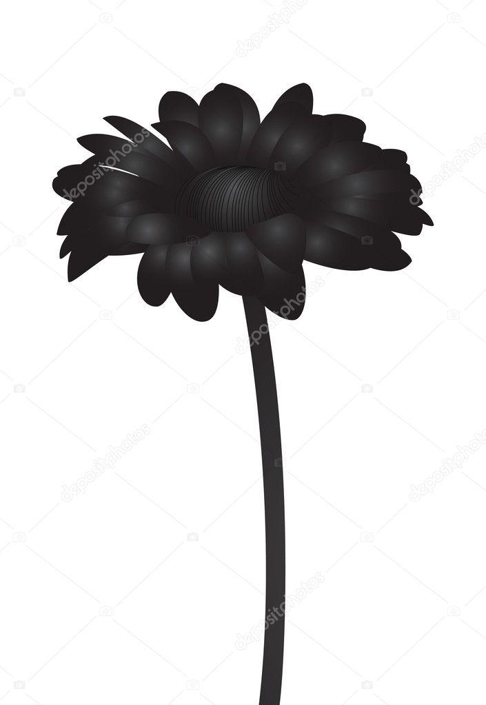 скачать через торрент черный цветок - фото 11