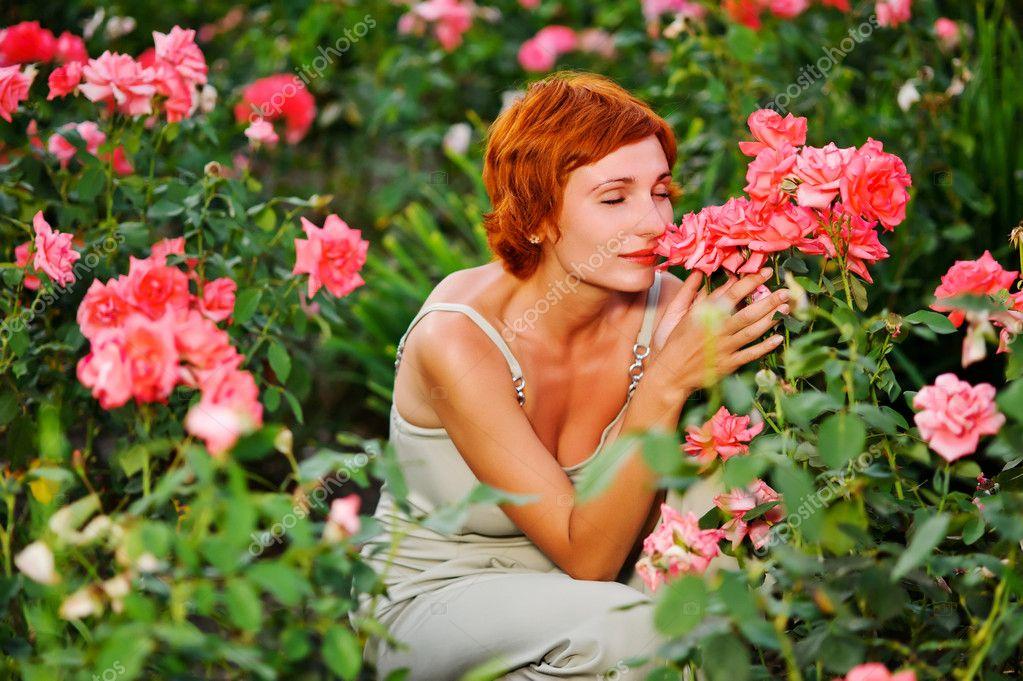 Bella cespuglio di rose rosa in un giardino di primavera campo di