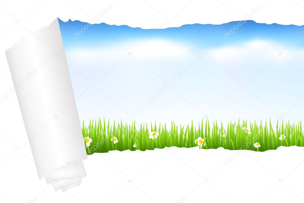 Beautiful Green Landscape With Grass