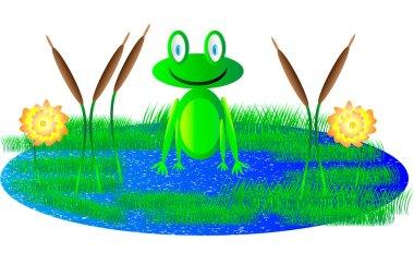 Cute frog