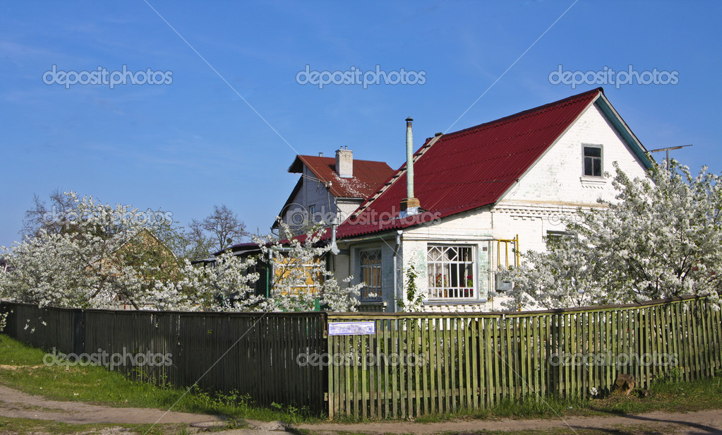 Cottage con tetto rosso e giardino di ciliegio in fiore for Piani architettonici di cottage