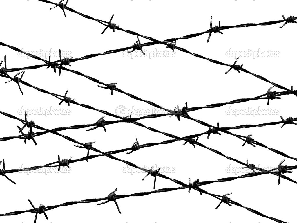 Barbed wire fence protection isolated on white for background ...