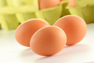 Chicken eggs on kitchen table stock vector