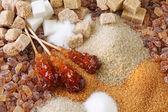Verschiedene Arten von Zucker
