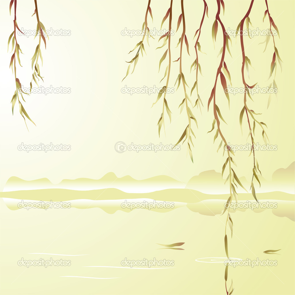 Weeping willow above the water