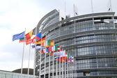 Evropský parlament a vlajky evropských států