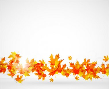 Vector autumn leaves abstract background