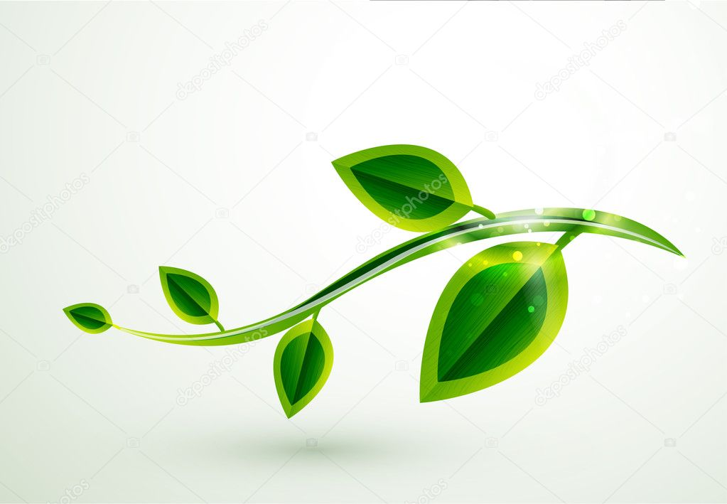 Vector shiny green leaves