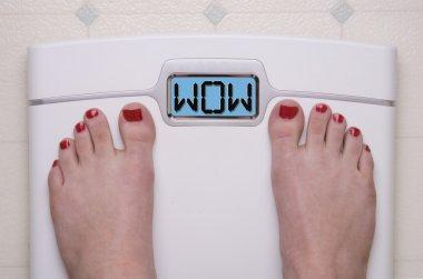 Digital Bathroom Scale Displaying OMG Message stock vector