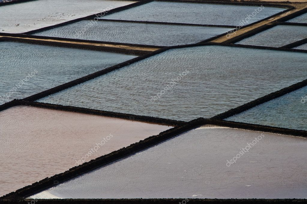 Salt basins in the salines