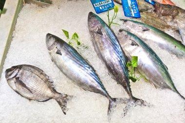 "Картина, постер, плакат, фотообои ""свежая рыба на льду для продажи на рынке "", артикул 5619226"