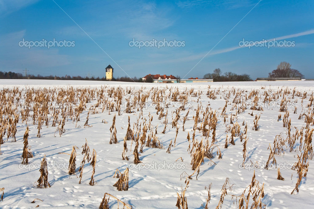 Beautiful landscape with water tower and housing area in winter