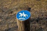 Fotografie podepsat na koni povoleno