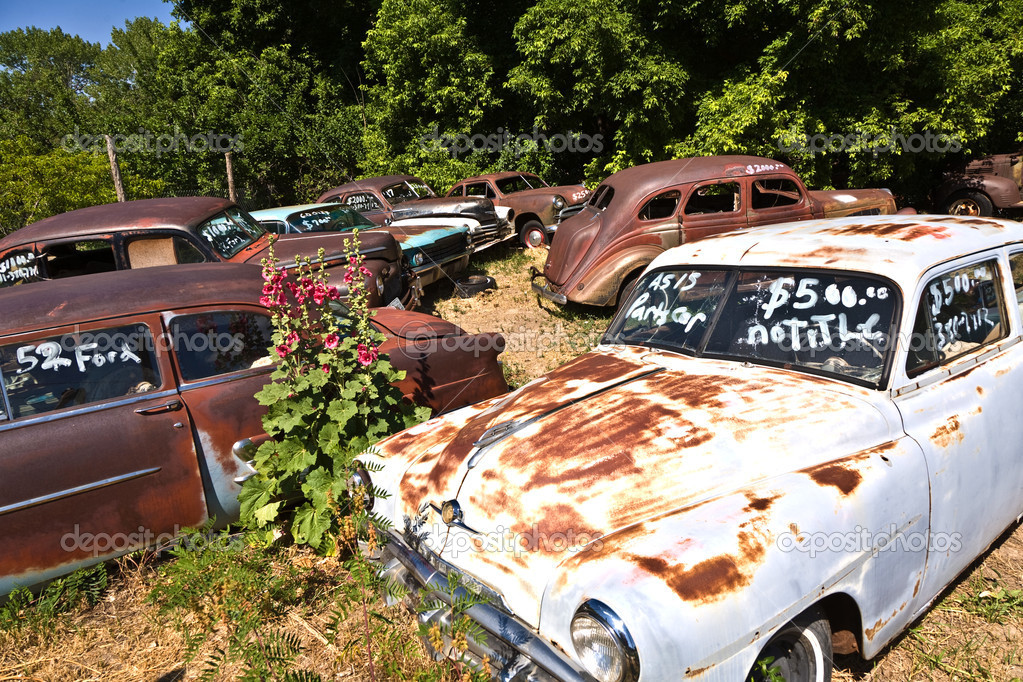 Junk Yard With Old Beautiful Oldtimers Stock Photo