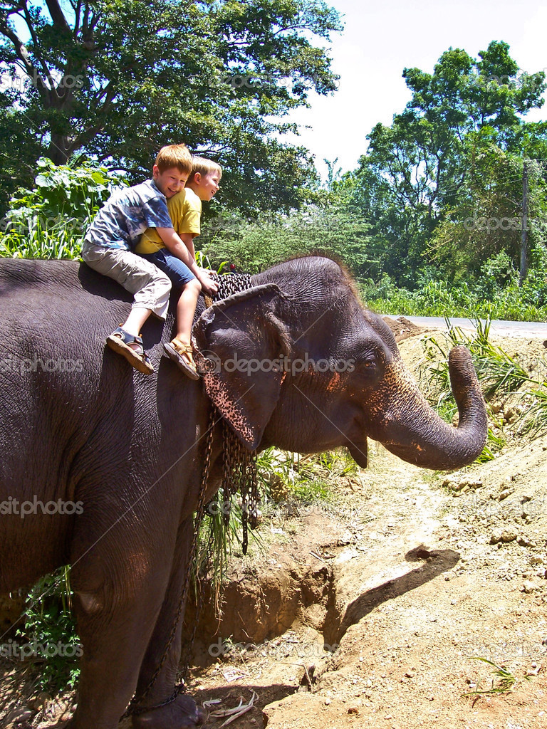 Children riding on an elephant and having fun