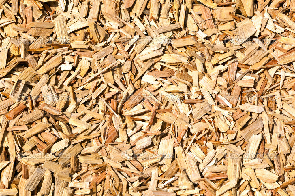 Wood shavings on the floor