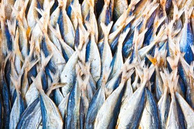 Stockfish at the market