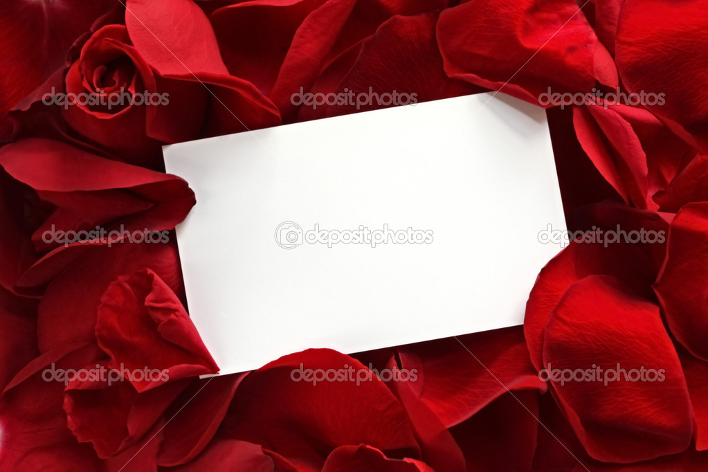 Gift card on Red Rose Petals ? Stock Photo ? robynmac #5527025
