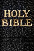 Holy Bible Macro