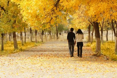 Young couple walking together in Autumn