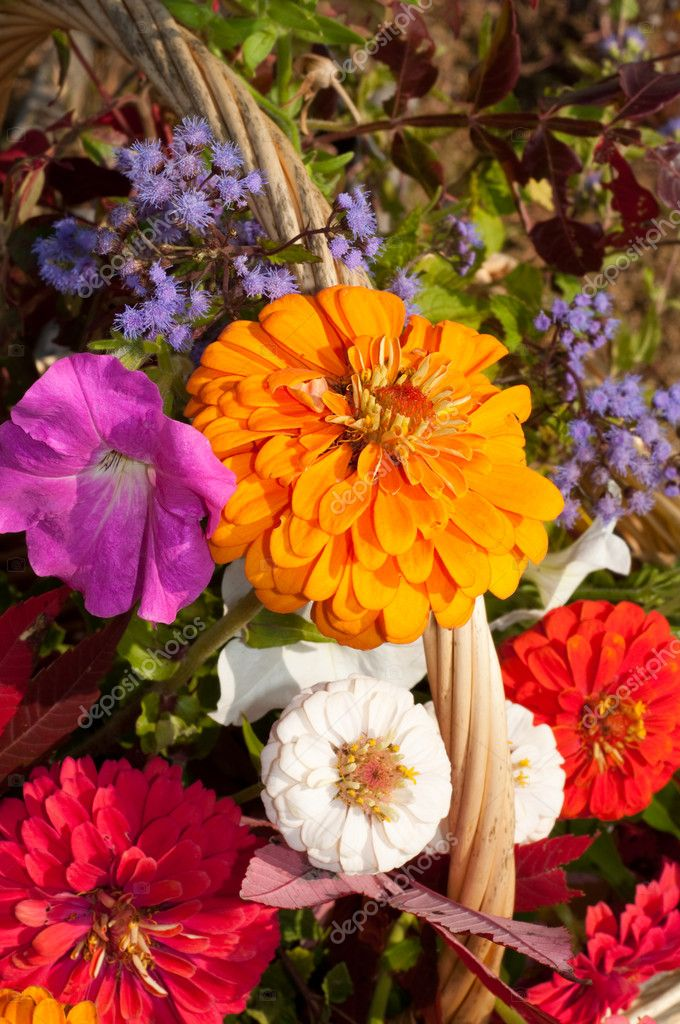 Close up image of basketful of beautiful colorful flowers