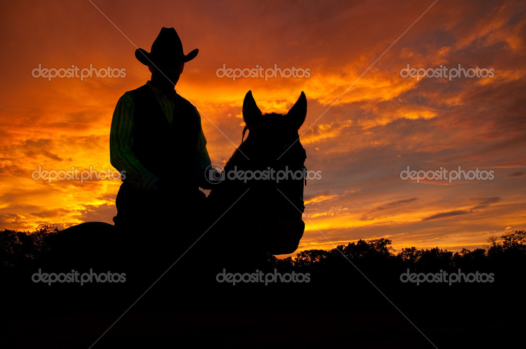 Silhouette of a horse and a rider in a cowboy hat