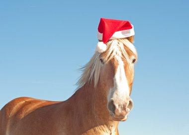 Humorous image of Santa's huge big helper