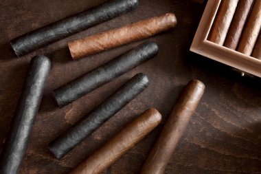 Cigar on a dark background