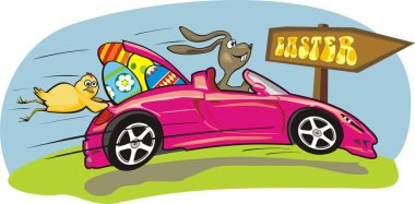 Crazy easter bunny and his pink car