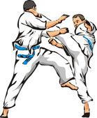 Fényképek Karate - kick és ütés