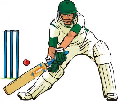 Cricket - bat and bat game