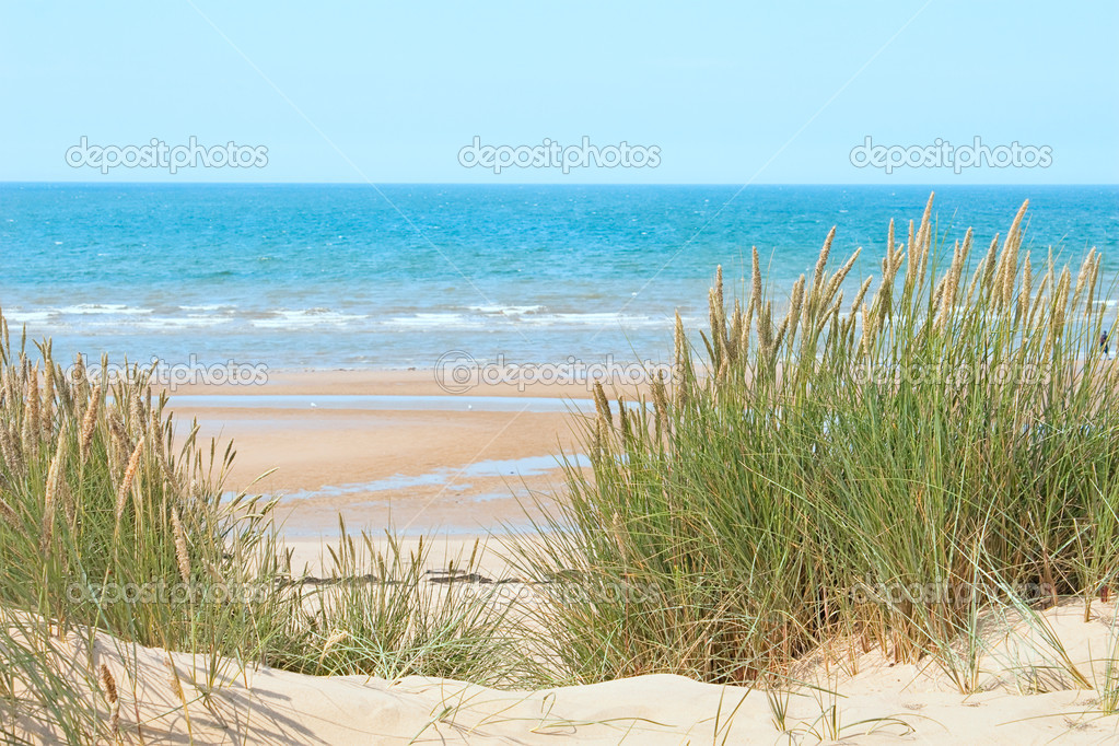 Sand beach in Formby, UK