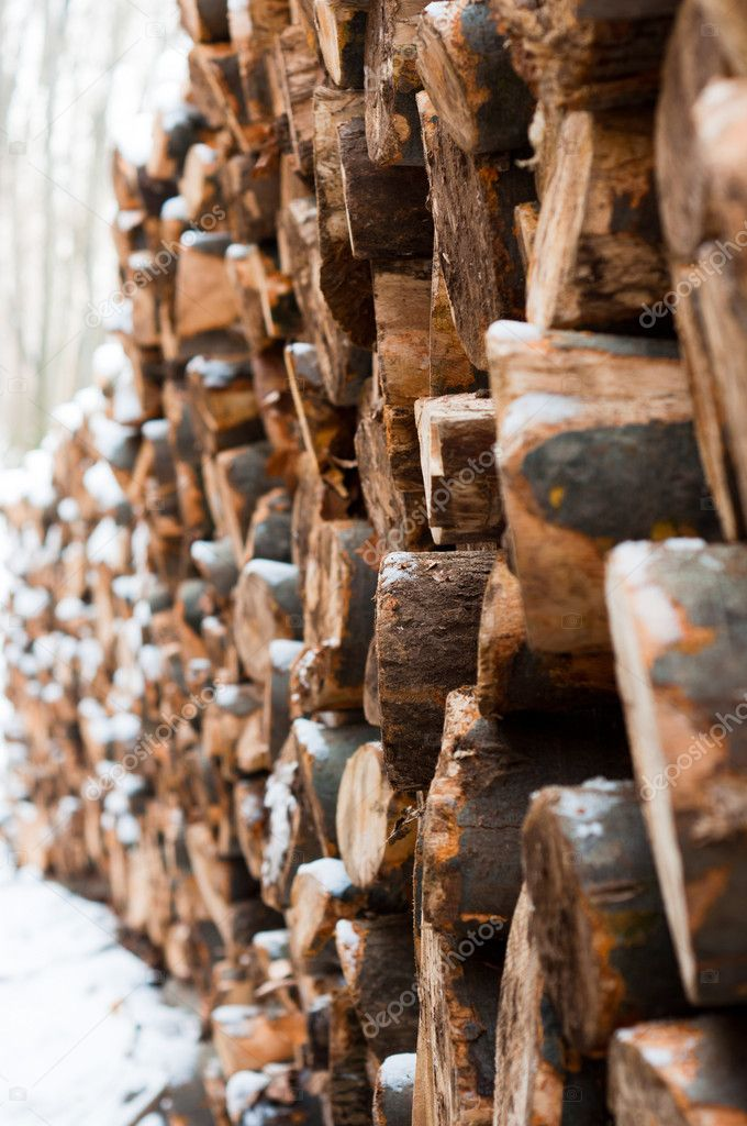 Logs of wood piled up with snow on them