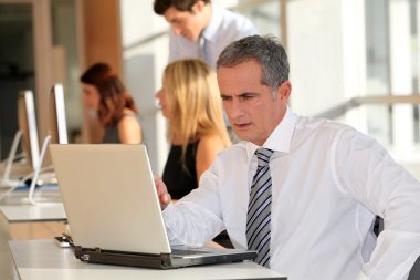 Mature businessman working on laptop computer