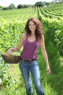 Winegrower woman with basket of grapes